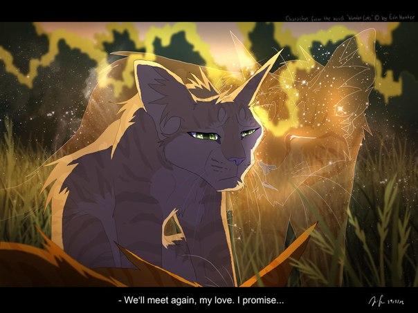 Огнезвезд смерть коты воители