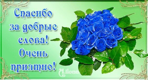 http://cs403018.userapi.com/v403018782/4d3a/YjWcAVLTJNQ.jpg