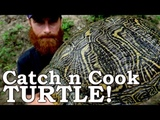 Catch and Cook WORLD'S MOST INVASIVE TURTLE! Ep08 100 WILD Food SURVIVAL Challenge!
