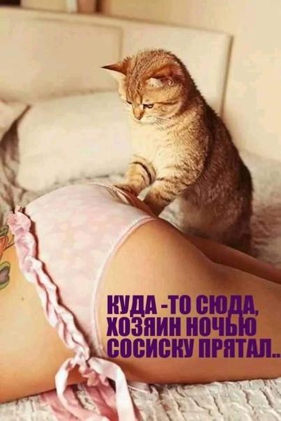 Фото №456242905 со страницы Оксаны Александровой