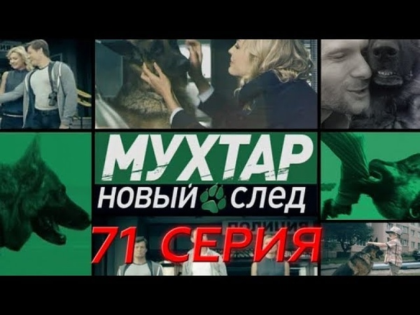 Мухтар Новый след 71 серия Догситтер
