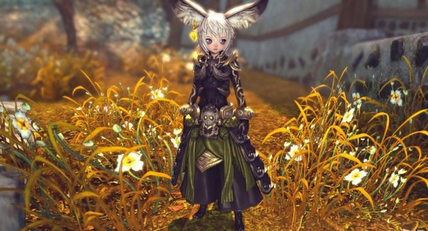 Blade and Soul деньги