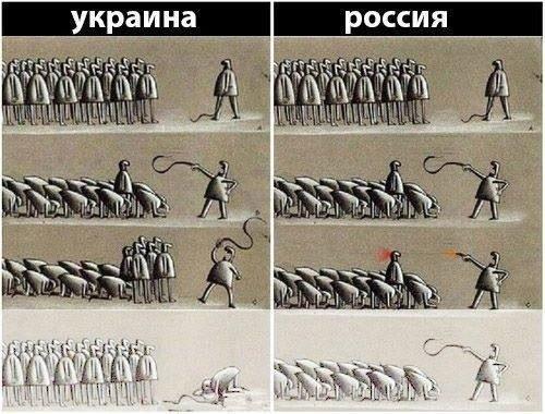 МИД РФ настаивает на проведении в Украине референдума - Цензор.НЕТ 2681