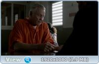 Рэй Донован (1-7 сезоны: 1-82 серии из 82) / Ray Donovan / 2013-2020 / ПМ (Amedia) / WEB-DLRip + WEB-DL (1080p)