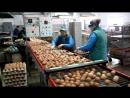 Куриные яйца с надписью «МЧС 101» изготовила Городокская птицефабрика