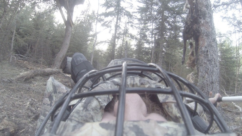 Jumping on a bear Angle 2