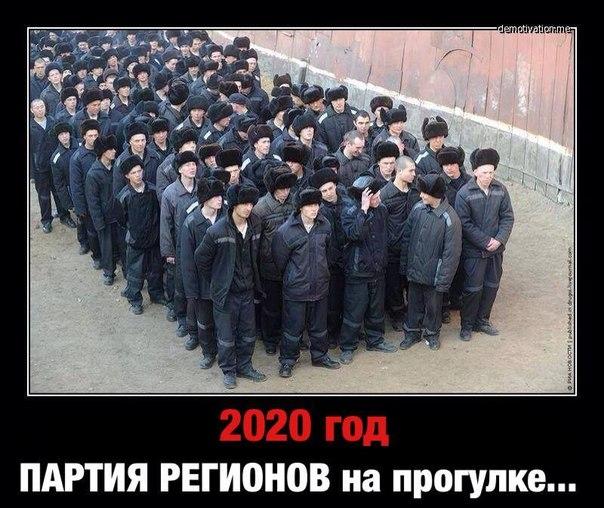 Янукович пообещал Нуланд ускорить освобождение арестованных, конституционную реформу и диалог с оппозицией - Цензор.НЕТ 4131