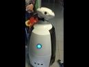 Робот поздравил меня с днём рождения. А чего добился ты к 20 годам? :D