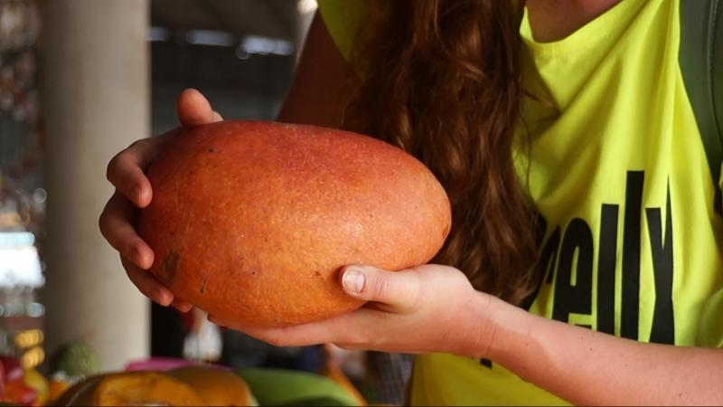 Поварское искусство Китая изобилие тропических фруктов и диковинных блюд смотреть онлайн без регистрации