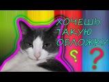 Как сделать обложку для видео? Пафосный кот :DD / Veronika Night