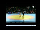 ЧЕ по олимпийским видам борьбы 2013 г : вольная борьба(жен-55,67,муж-74)