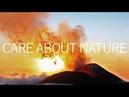 Красиво! Природа! Животные! Под хорошую музыку! Amazing nature! Animals!