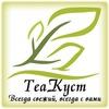 Чайный бутик «ТеаКуст»