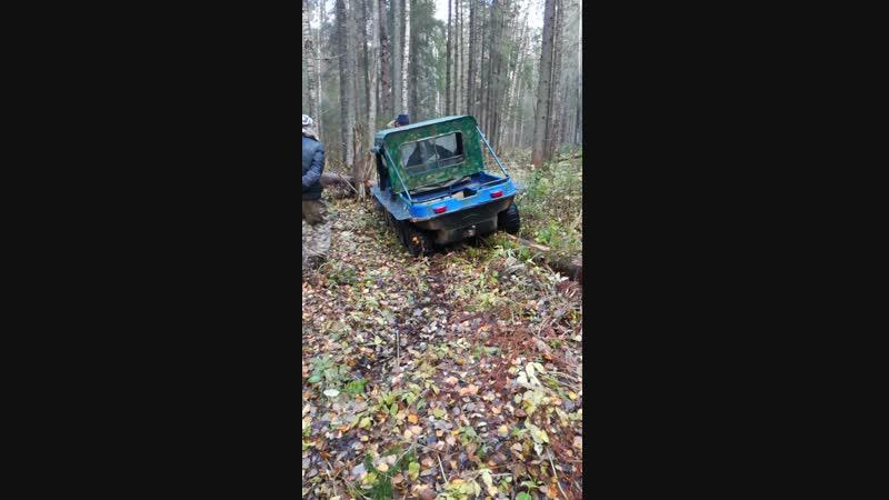 Болотоход в лесу