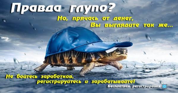 Crazy Park - Zelenograd ru