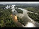 Дикая природа Амазонки Колыбель жизни HD