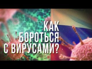 Как бороться с вирусами?