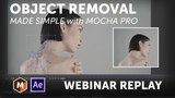 Mocha Pro Webinar Replay: Object Removal Made Simple