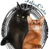 IstraCats- Питомник Абиссинских кошек и Мейн Кун