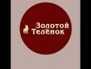 ЗОЛОТОЙ ТЕЛЁНОК