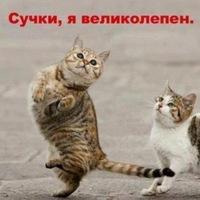 Максим Подосочный, 15 мая 1987, Красноярск, id8734080