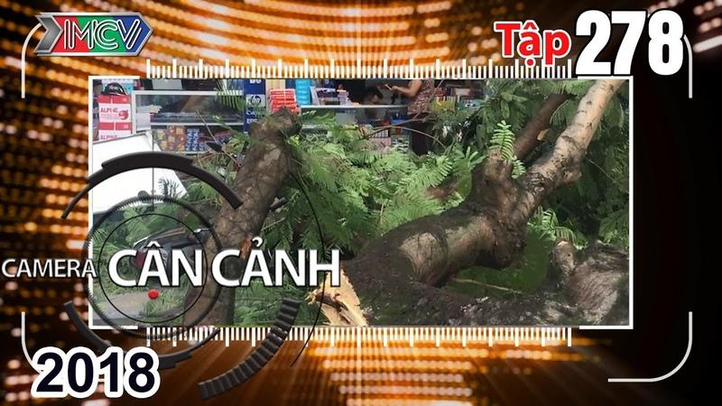 CAMERA CẬN CẢNH | Tập 278 FULL | An toàn điện - 'Ảo thuật' đường phố - Đội tuần tra thoát nước 4.0👍