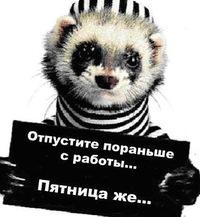Татьяна Радченко, 4 апреля 1993, Архангельск, id227884357