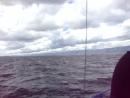Водная экскурсия через Малый Байкал