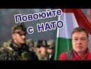 Семченко. Венгрия подтянула ещё один батальон к границе с Закарпатьем