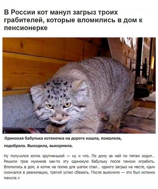 Фото №466253079 со страницы Станислава Превезенцева