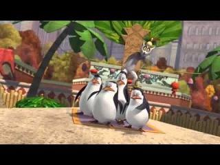 Pingwiny z Madagaskaru sezon 2 odc 13 Twarde jajko do zgryzienia PL HD