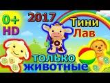 Тини лав 2017. Лучшие мультфильмы для самых маленьких 2016,2017.Тини лав только животн ...