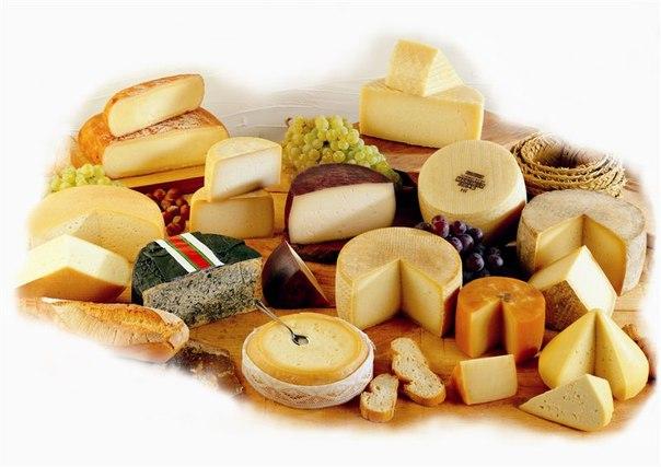 качественный испанский сыр в Украине