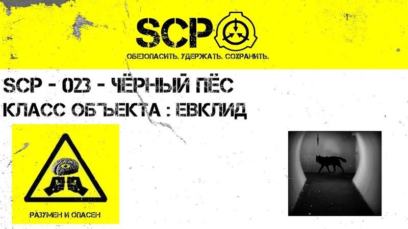 SCP 023 Чёрный пёс SCP Stories