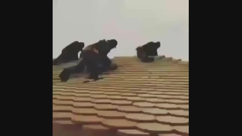 Instagram WhatsApp Üçün Çox Gözəl Çox Maraqlı Status Bandit 2018 By Ayaz