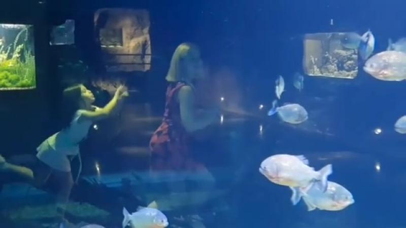 Актриса Карина Мишулина с семьей в Океанариуме КрокусСити