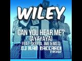 Wiley feat. Skepta &amp Ms D. &amp JME, DJ Bobo - Can You Gonna Dance (Dj Ivan Baccardi MashUp)