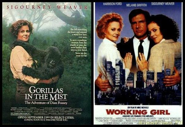 В 1994 году выходят сразу три фильма с маколеем калкиным в главной роли принёсшие калкину по 8 миллионов долларов