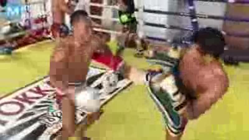 MUAY THAI CYBORG Saenchai Muscle Madness