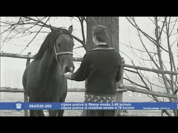 Tamburaški sastav Zvona - Šokačka tuga