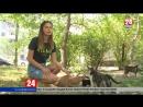 Без еды и конуры Журналисты телеканала Крым 24 узнали как решается проблема бездомных животных в Симферополе