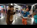 Welcome to Sochi медведь с балалайкой встретил легионеров в аэропорту