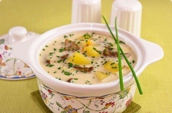 """""""Сырный суп с белыми грибами"""""""