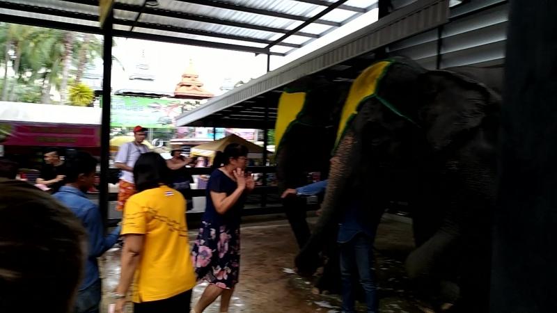 Парк Нонг Нуч Паттайя