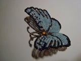 Бабочка из бисера №2. // Часть 1/5. // Бисероплетение. // Butterfly Bead.