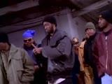 The Flavor Unit MCs (Treach, Chip-Fu, Freddie Foxx, Queen Latifah, Heavy D, D-Nice &amp Dres) - Roll With That Flava