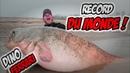Record du monde du plus gros silure 2018