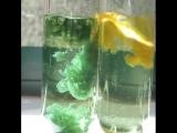 Химические водоросли
