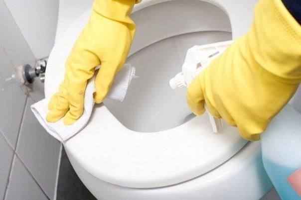 Четыре очень простых способа поддержания туалета в чистоте.