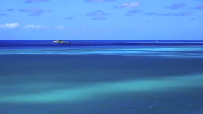 Caribbean Blue - Bandari.mp4